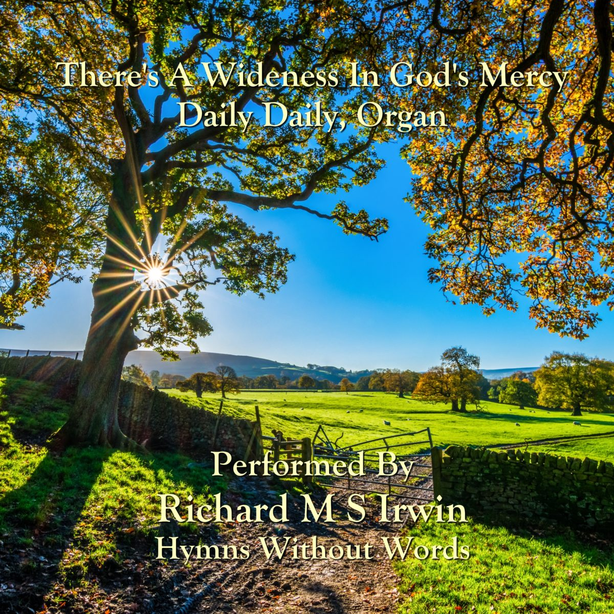 There'S A Wideness In God'S Mercy (Daily Daily, Organ, 3 Verses)